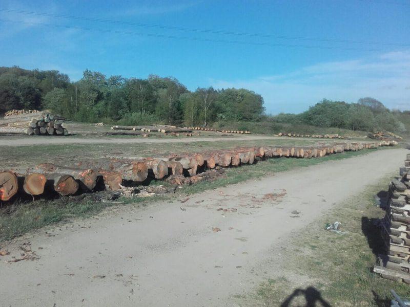 Espace de stockage pour grumes de bois Arlon Habay
