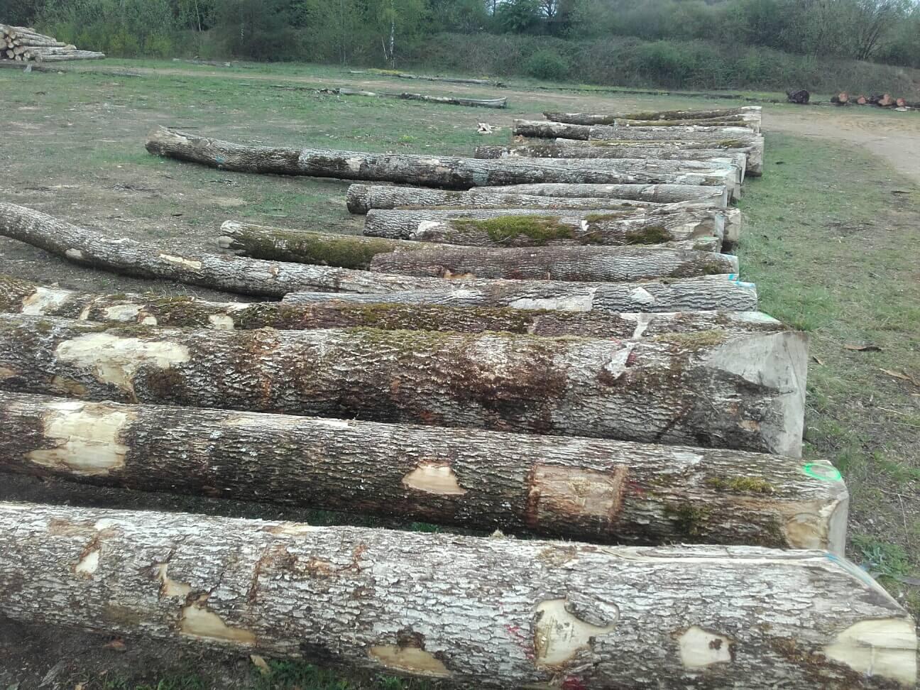 Parc à grumes Arlon, Habay, stockage