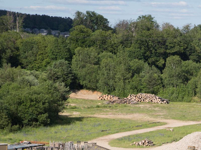 Parc à bois Arlon : stockage grumes, service chargement et déchargement province de Luxembourg